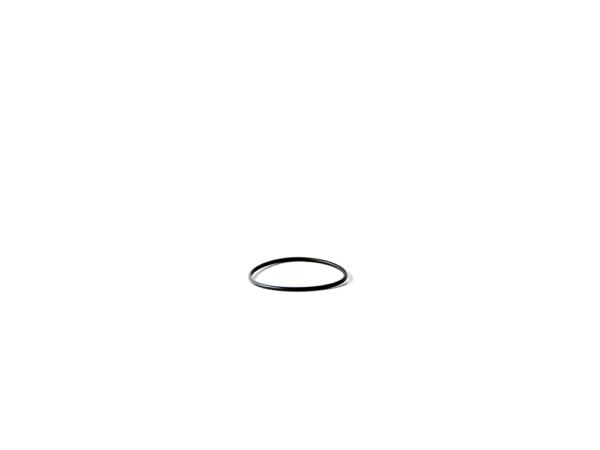 O-ring för unionskoppling Astral pump Senna