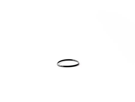 O-ring för unionskoppling Fairland